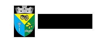 Primaria Chitila